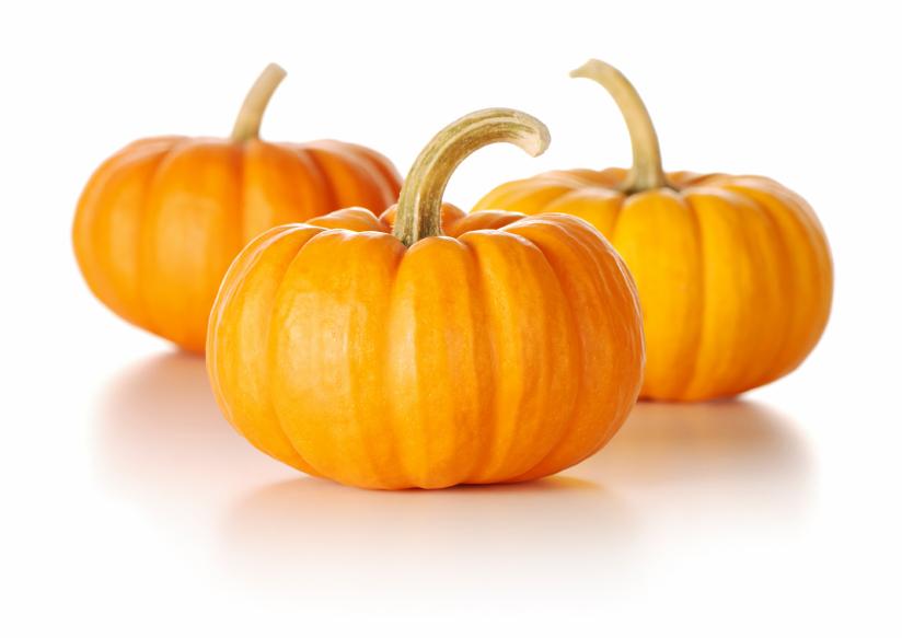 Happy Thanksgiving, Canada! | IsaFYI.com