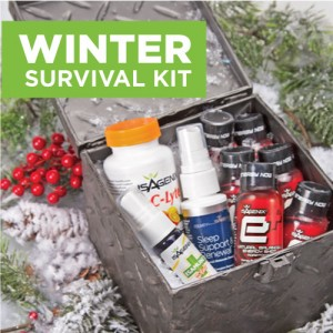 HolidaySurvivalKit-500x500-120315