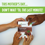 Don't Wait! One Week Left to Save on IsaDelight Chocolates for Mother's Day