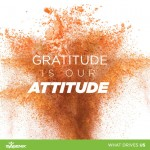 What Drives Us: Gratitude