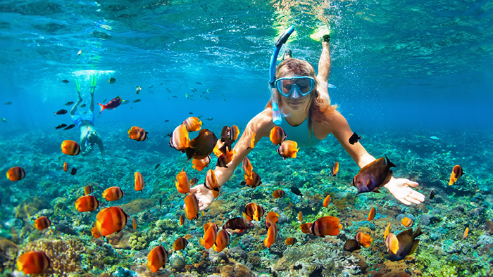 Girl snorkeling with a school of fish