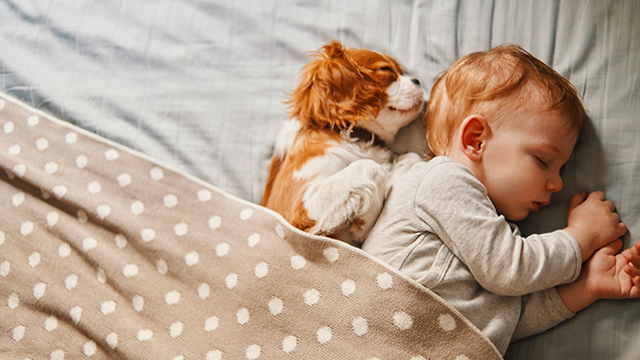 Baby and puppy sleeping together