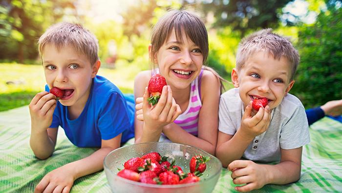 Three kids enjoying strawberries outside on a picnic blanket