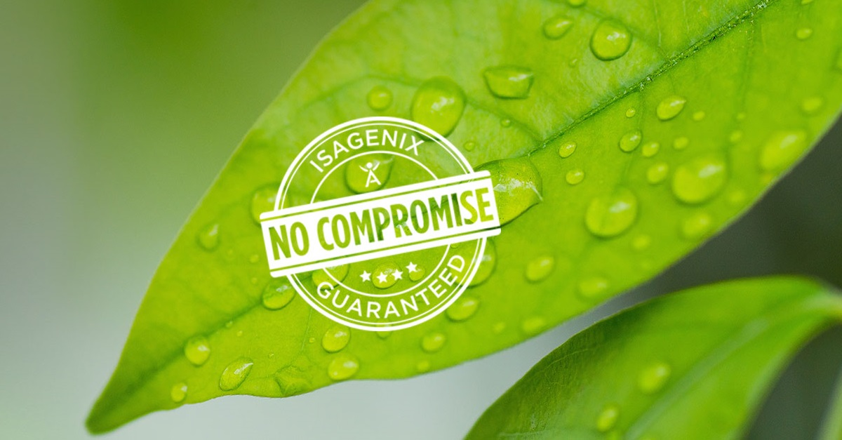 No Compromise Seal