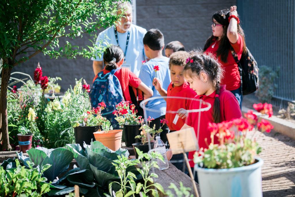 Volunteers examining flowers at a garden center