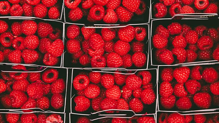 Boxes of raspberries