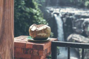Coconut-Day_Coconut-Straw-Waterfall