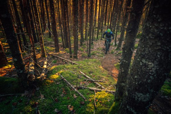 Man mountain biking in the forest